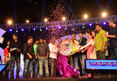 Loukyam Movie Audio Launch