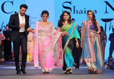 Bollywood celebrities at cancer fundraiser fashion show