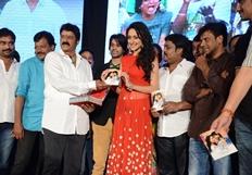 Mirchi Lanti Kurradu Movie Audio Launch