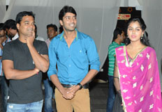 Brother of Bommali Audio Launch