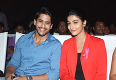 Oka Laila Kosam Audio Success Meet