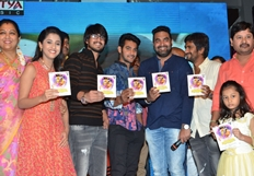 Seethamma Andalu Ramayya Sitralu Audio Launch Photos