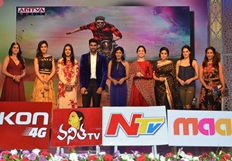 Speedunnodu Audio Launch Photos