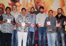 Mande Suryudu Audio Launch