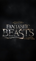 Fantastic+Beasts+and+Where+to+Find+Them Movie