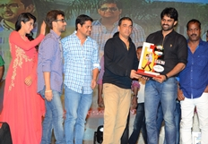 PNLJ Audio Success Meet