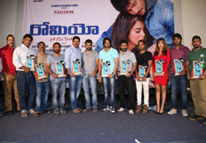 Romeo Platinum Disc Function
