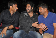 Run Raja Run Audio Launch