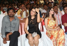 365 Days Movie Audio Launch