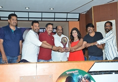 Affair Platinum Disc Function Photos