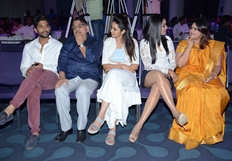 Sarrainodu Movie Succes Meet Photos
