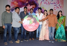 Guppedantha Prema Movie Audio Launch Photos