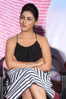 Intlo Deyyam Nakem Bhayam Success Meet Photos