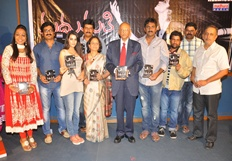 Madhumathi Audio Launch - Stills